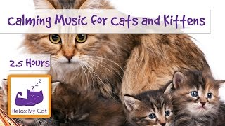 2.5 Hours of Calming Music for Cats and Kittens! Relax Your Cat with Peaceful Music!