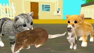 Симулятор маленького котёнка Cat Sim #2  Нашли себе пару мульт-игра про котят развлекательное видео