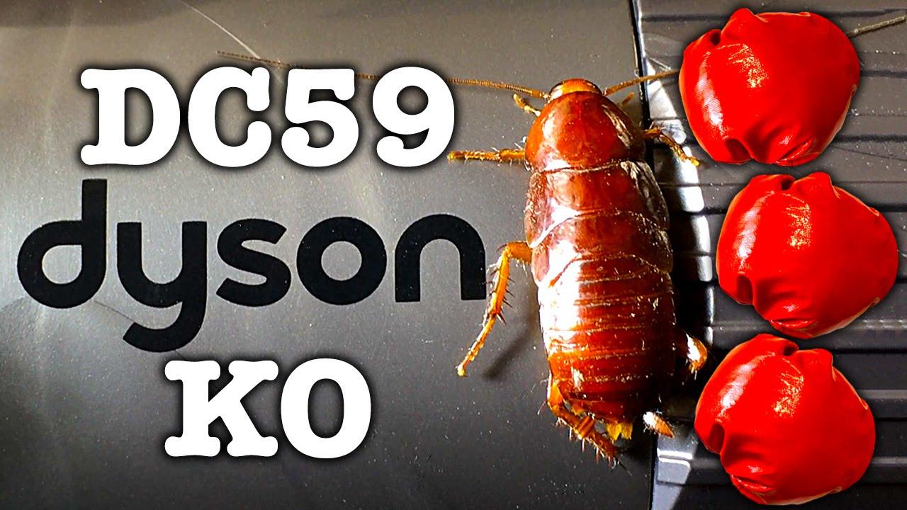 Dyson Dc59 Giant Chernobyl Cockroach Killer Stick Vacuum