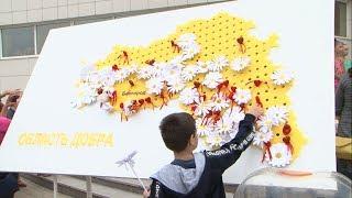 В Белгороде прошла акция «Белый цветок»