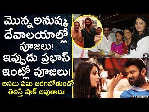 Prabhas Marriage Updates | Prabhas & Anushka Wedding Gossips | Celebrity News | Telugu Panda