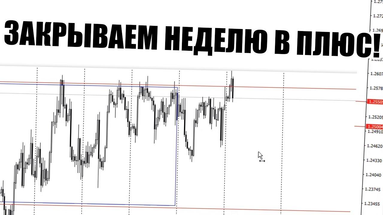 Плюсуй стабильно каждый день. Аналитика рынка с Александром Борских