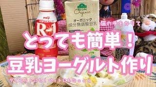 猫の手をかりながらもふにち家ではR1でよく豆乳ヨーグルトを作っており...