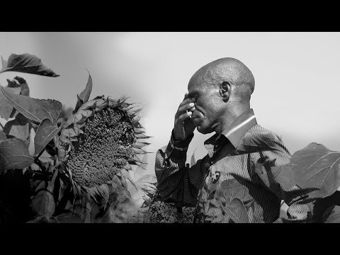 Stealing Sunflowers | A News24 Documentary