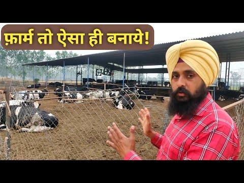 डेयरी फार्म कैसा हो समझे How to make/Start Dairy Farm In india Shed Design 2018