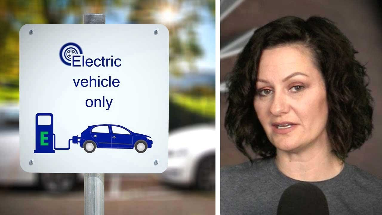 Electric vehicle sales crash after Ford cuts off government subsidies | Sheila Gunn Reid