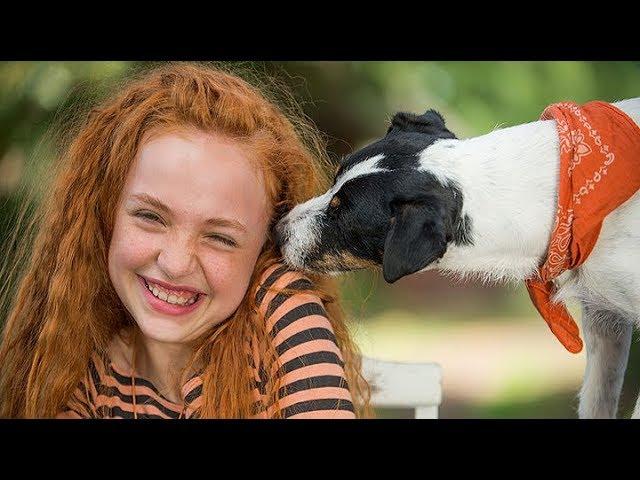 Lili az állatok megmentője (Little Miss Dolittle) német családi vígjáték Online teljes film magyarul, 96 perc Full HD