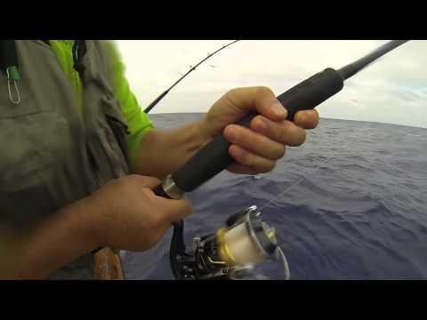 Fortune Sportfishing October 25, Seasons End