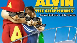 Gambar cover Jonas Brothers - Only Human (Chipmunk Version)