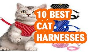 10 Best Cat Harnesses You Can Buy Of  2019
