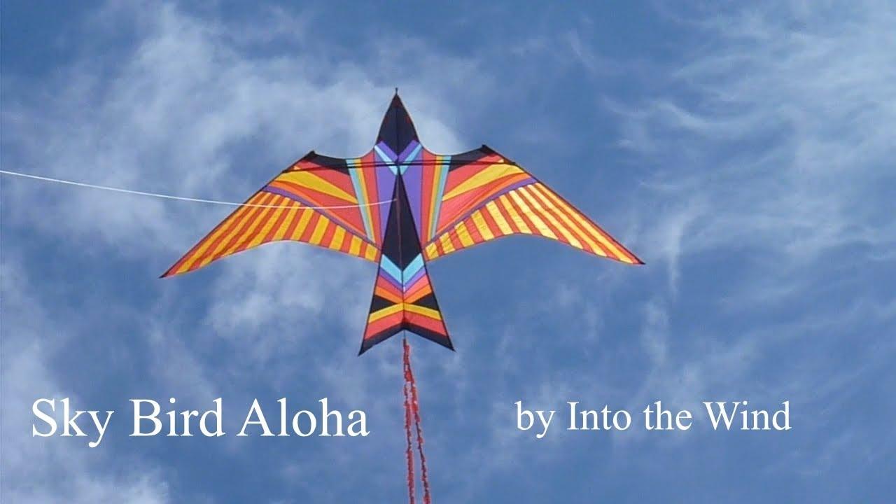 Sky Bird Aloha Kite Youtube