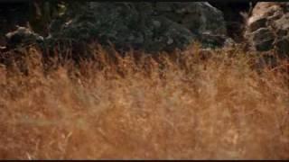 Adiemus - Cantus - Song of Aeolus