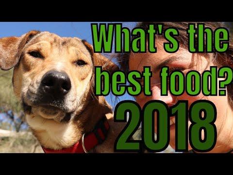 Top 10 Dog Foods - UK
