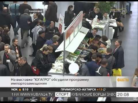 Птичий рынок в Краснодаре 04.06.2017г. - YouTube