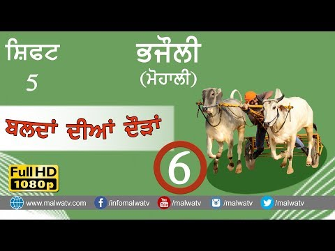 BHAJAULI (Mohali) ● OX RACE - 2018 ● SHIFT Last ● बैल गाड़ी की दौड़ें بیل گاڑی کی دوڑے- ● Full HD  6