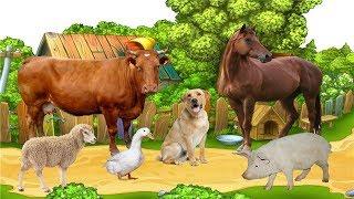 домашние животные и их дети. как говорят животные.