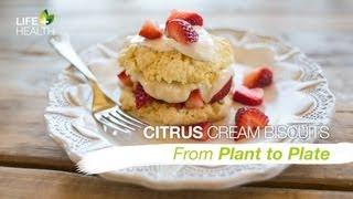 Citrus Cream Biscuits