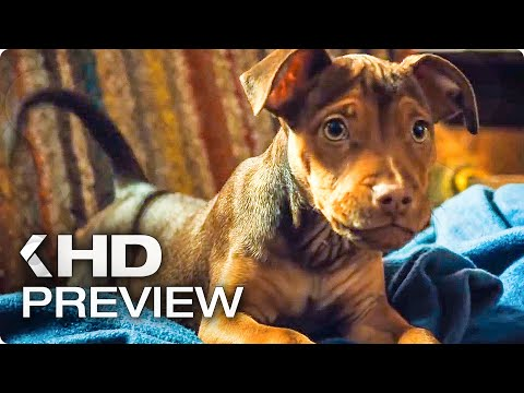 A DOG'S WAY HOME - First 10 Minutes Preview & Trailer (2019)