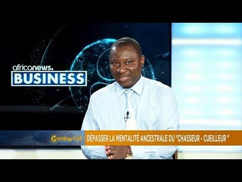 Utilizing natural resources in Africa [Business segment]