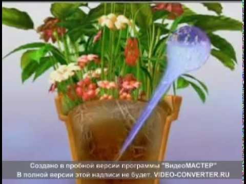 Шар для полива растений