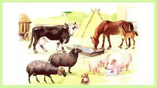 Домашние животные и их детеныши. Обучающее видео для детей