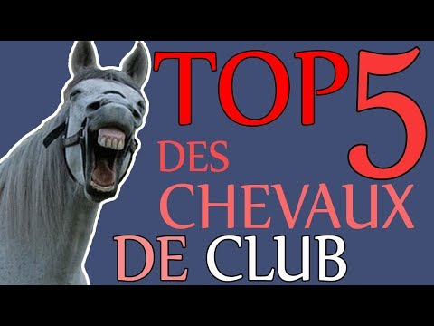TOP 5 DES CHEVAUX DE CLUB (Humour)