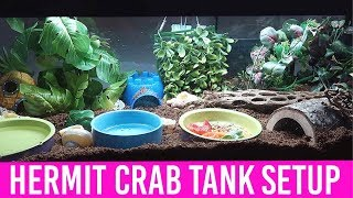NEW Hermit Crab Tank Clean And Setup