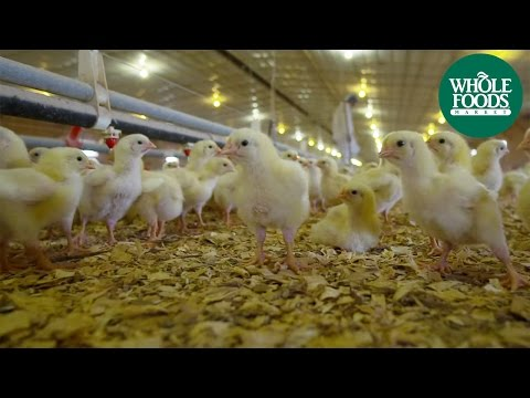 Bell and Evans | Meet the Ranchers | Whole Foods Market