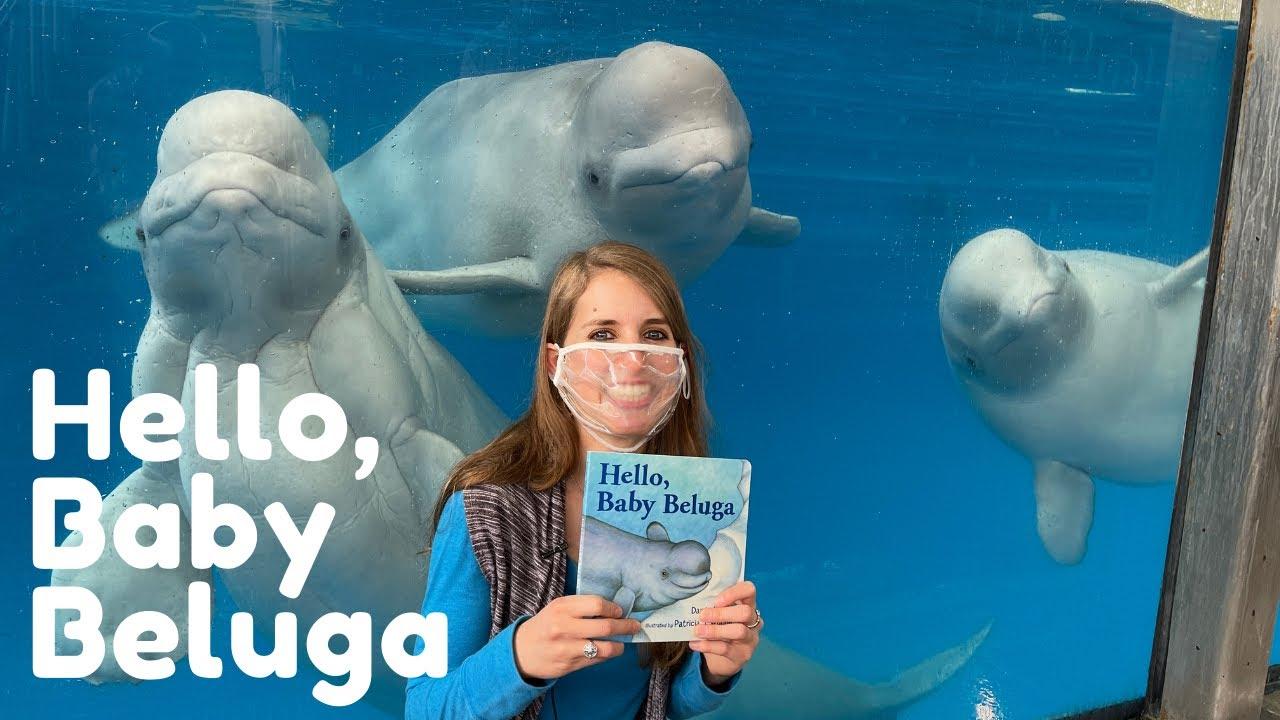 Hello Baby Beluga I SeaWorld I Whale Encounter I Book Days I Kassi Kincaid I San Antonio