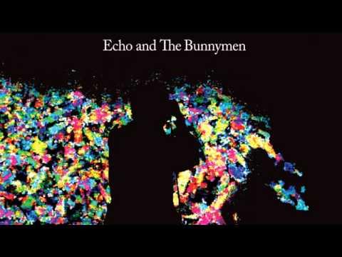 04 Echo & The Bunnymen - My Kingdom (Live) [Concert Live Ltd] mp3