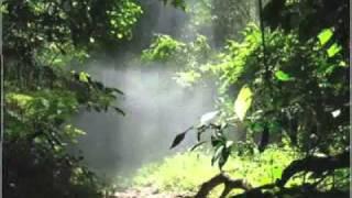 ROXAS ORIENTAL MINDORO  Tourism Promotional Video ( Philippines)
