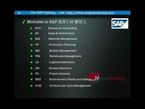 SAP - What is SAP?