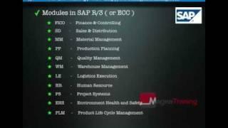 SAP - What is SAP?