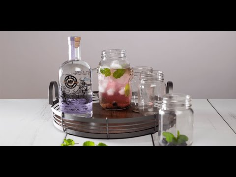 cocktail-recipes- -how-to-make-the-blueberry-ginger-mojito