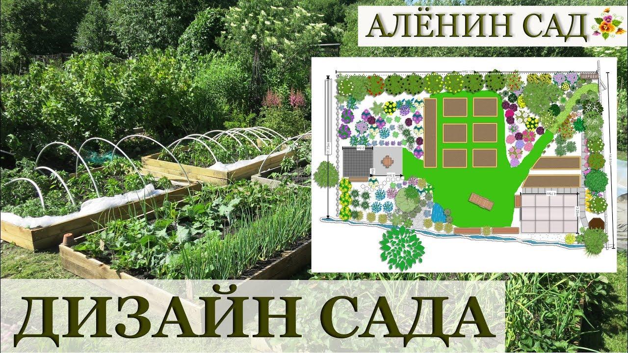 ПЛАН САДА / Идеи на 2019-й / Ландшафтный дизайн