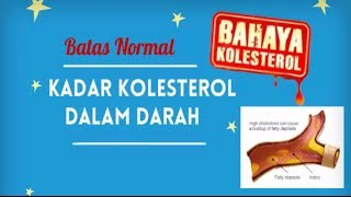 Batas Normal Kadar Kolesterol Dalam Darah