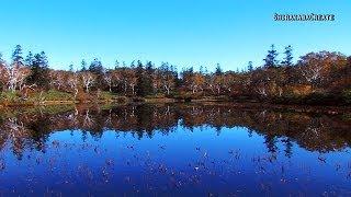 紅葉の神仙沼 - 共和町 2013 Colored Leaves in Shinsennuma