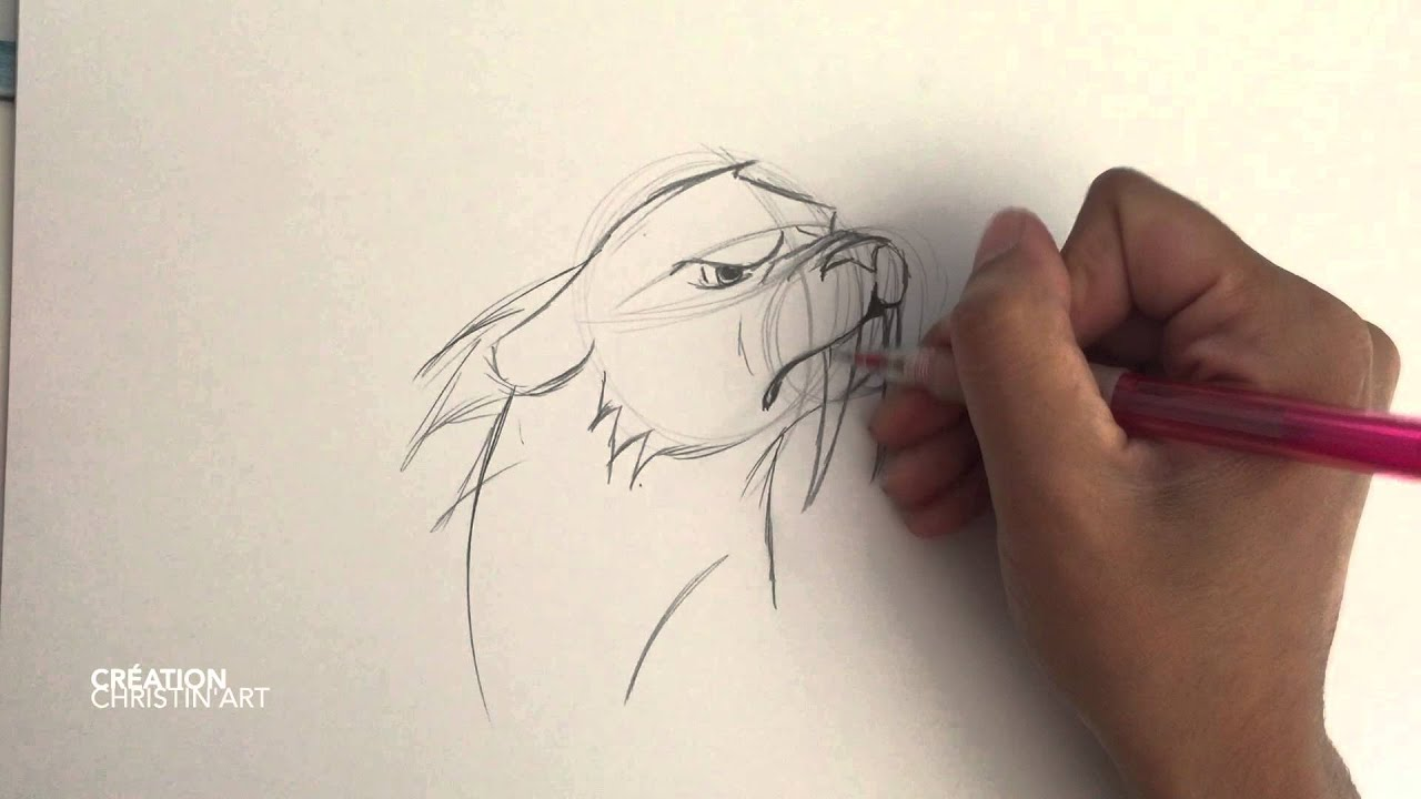 Speed painting 10 tigre dent de sabre cartoon youtube - Dessin de sabre ...