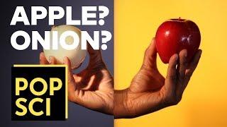 Can An Onion Taste Like An Apple?