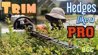 How to trim heḋges like a PRO. Hedge trimming tips, plus crepe myrtle bush pruning