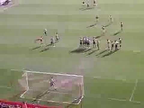 Zheng Zhi goal vs Newcastle