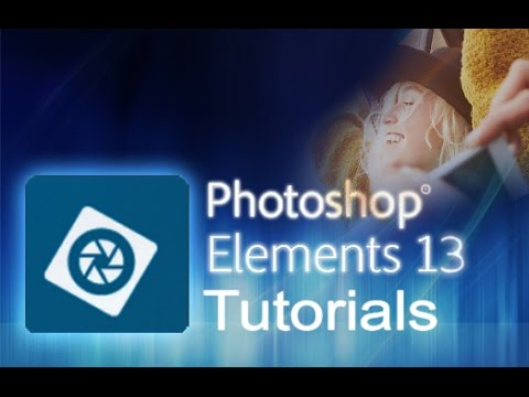 photo elements 13