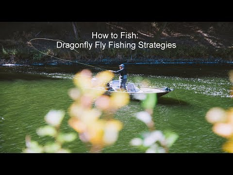 How To Fish: Dragonfly Fly Fishing Strategies | GoFishBC