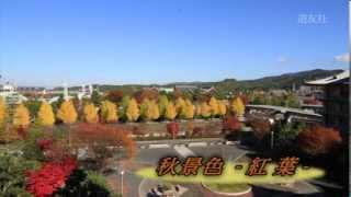 第60回 秋景色 -紅葉-