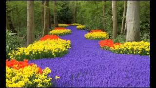 Самые красивые и знаменитые сады в мире(Предлагаю фотопрогулку по самым знаменитым садам и паркам мира. Конечно,полностью ощутить всю прелесть..., 2015-02-02T19:47:19.000Z)