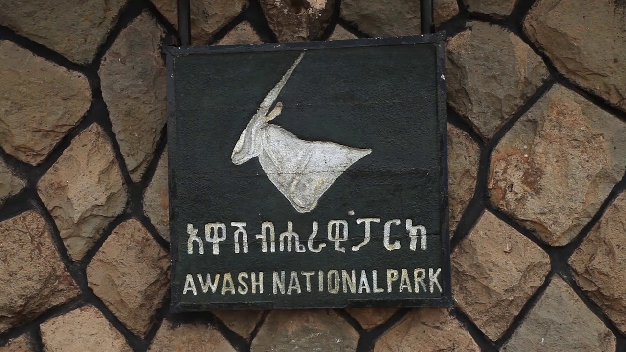 Travel Ethiopia Awash National Park part 1