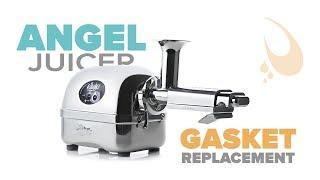Angel juicer gasket replacement kit