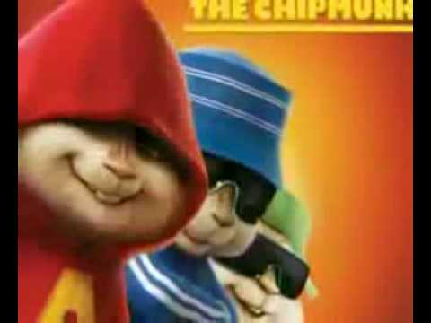 Chipmunks Akon feat  Shaggy  Whats Love Klip