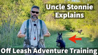 Uncle Stonnie Explains The Benefits Of Off Leash Dog Training Adventures