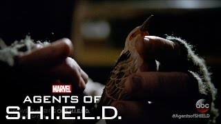 This Where I Die – Marvel's Agents of S.H.I.E.L.D. Season 3, Ep. 15